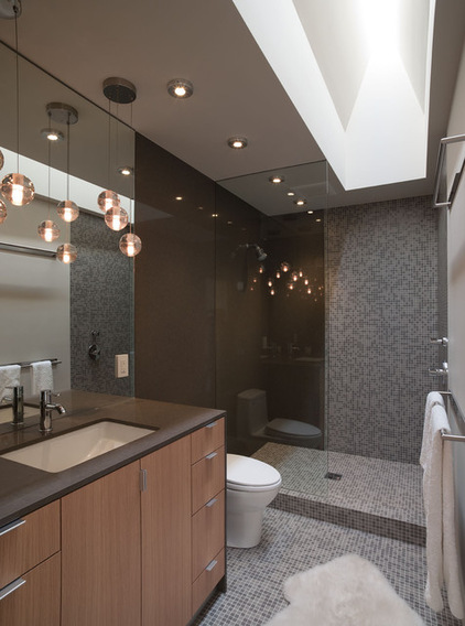 c7a1c5a50d26732c_7536-w422-h568-b0-p0--contemporary-bathroom.jpg